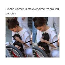 Selena Meme - dopl3r com memes selena gomez is me everytime im around puppies