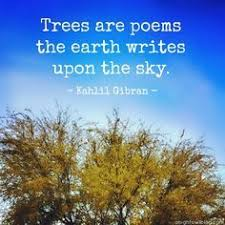 best 25 poems about trees ideas on tree poem