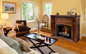 Fireplace Stores In New Jersey by Electric Fireplaces At The Fireplace Place Fairfield Nj