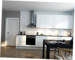 White Kitchen Ideas Uk by Kitchen Style White Refrigerator Fancy Scandinavian Kitchen