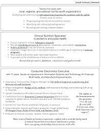 summary resume exles resume summary exles resume summary s summary s for resume