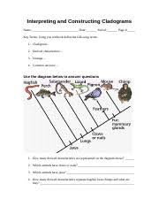 worksheets 10 3 10 4nbans 10 3 regulating the cell cycle lesson