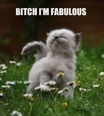 I Am Fabulous Meme - bitch i m fabulous weknowmemes