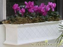self watering window boxes flower boxes u0026 deck rail planters