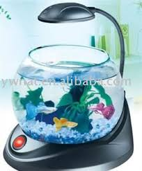 Fish Tank Desk by Glass Mini Fish Tank Led Mini Aquarium Mini Desk Fish Tank Buy