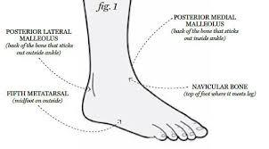 High Ankle Sprain Anatomy Treat An Injured Ankle