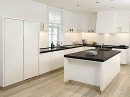 kitchen 19 spotless kitchen design cleaning your kitchen sink