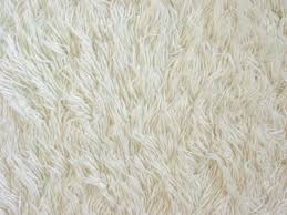 texture of white fuzzy carpet stock photo picture and royalty