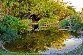 Huntington Botanical Garden by Photo Huntington Botanical Garden San Marino California Usa Nature