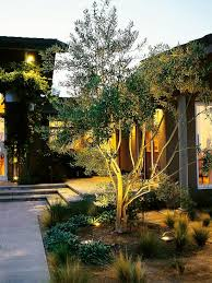 best 25 landscape lighting design ideas on pinterest garden