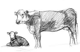 an interview and hereford sketches u2013 susan fox