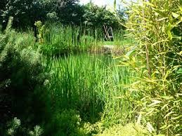 garten und landschaftsbau hamm privatgärten garten und landschaftsbau helm gmbh hamm