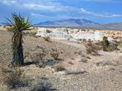 Tule Springs Fossil Beds National Monument Tule Springs Fossil Beds National Monument Nevada