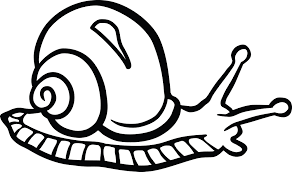 clipart of a snail