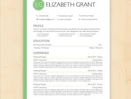 Free Professional Resume Maker Awful Best Professional Resume Writing Companies Tags