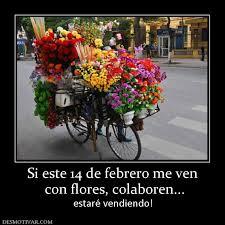 imagenes graciosas por el 14 de febrero desmotivaciones si este 14 de febrero me ven con flores colaboren