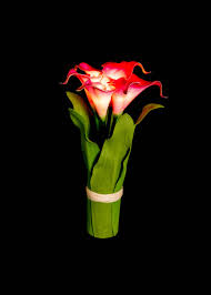Calla Lily Vase Life Blossom Collection Led Battery Powered Beauty Calla Lily Flower