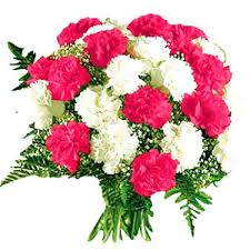 carnation bouquet send white carnation bouquet online to ahmedabad