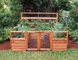 Backyard Food Garden - Designing a backyard