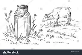milk cans grass country style vector stock vector 624817844