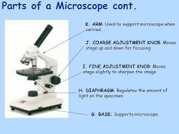 what is a light microscope used for microscope used to study items too small to be seen with the