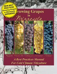 growing grapes in minnesota minnesota grape growers association