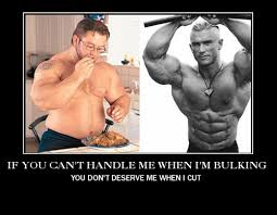Bulking Memes - if you can t handle me when i m bulking you don t deserve me