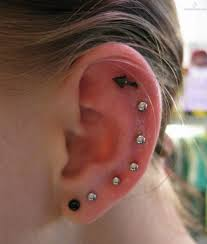 ear piercing studs ear piercing studs images search