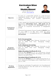 Best Resume Template For Accountant by Resume Format For Accountant Doc Resume For Your Job Application