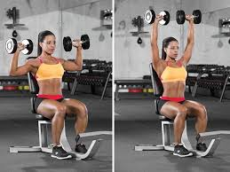 Seated Bench Press Seated Dumbbell Overhead Press Sculpt Shoulders Pinterest