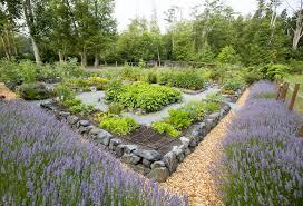a beautiful camano island garden produces a bounty of fruits and