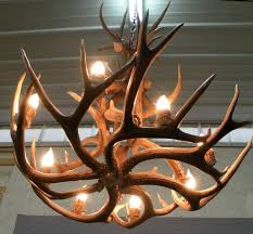 modern deer antler chandelier home design ideas for pertaining to