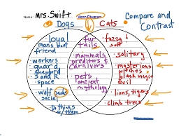 Comparison And Contrast Essays Examples Showme Compare And Contrast Graphic Organizers