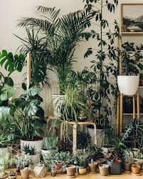 pin by andreas johan on contain yourself pinterest plant rooms