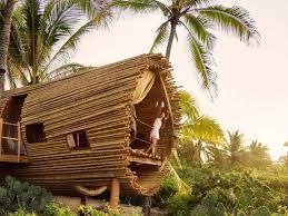 three house treehouse playa viva hotel juluchuca mexico