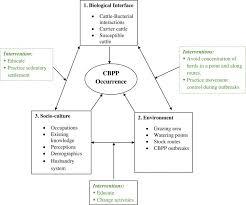 bureau change montpellier fresh development bank diegrobemasseder info