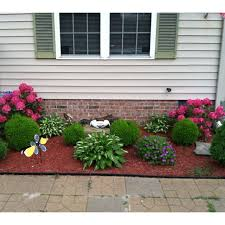 landscape surprising plants for front of house decor landscaping