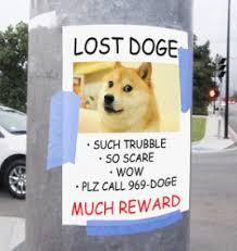 Dogecoin Meme - the drift englandsemo