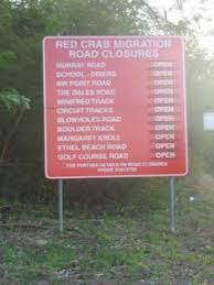christmas island crab migration around the world in 80 days