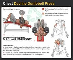 decline bench press muscles chest decline dumbbell press fitness exercise sixpack gym yeah