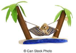 stock photography of just hanging around puppy hammock a