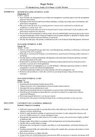 Internal Auditor Resume Manager Internal Audit Resume Samples Velvet Jobs