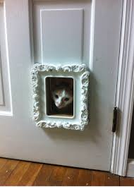 replaced our ugly cat door with an ikea picture frame only 5 the