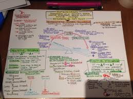 homeostasis concept map complete u2014 u003e pre slp is now blogging