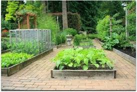 Garden Layout Software Vegetable Garden Layouts Elcorazon Club