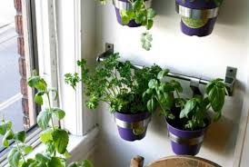 plant awesome wall mounted planters indoor indoor living wall