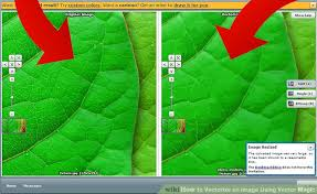 tutorial vector magic desktop edition how to vectorize an image using vector magic 7 steps