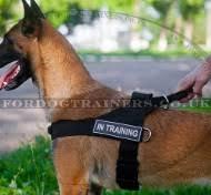 belgian shepherd weight chart belgium shepherd dog harness for training weight pulling h17