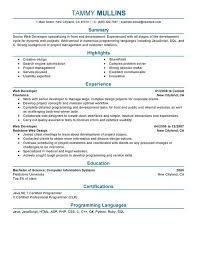 Resume Examples For Software Engineer by Good Software Developer Resume Resume Sample