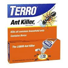 Natural Ant Killer For Kitchen by Ants Ants And More Ants The Home Depot Community